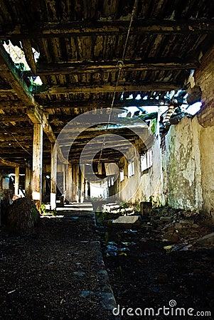 Collapsing interior of barn