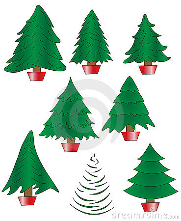 Collection of 8 Undecorated Christmas Trees