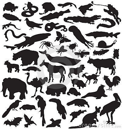 Collection of animals silhouettes.