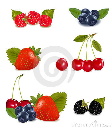 Collection of berry fruits.