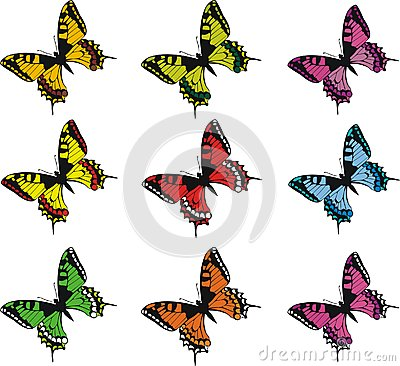 Collection of colorful  butterflies
