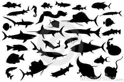 Collection of different fish silhouettes