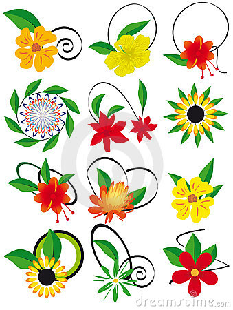 The collection of flowers and leaves to the design