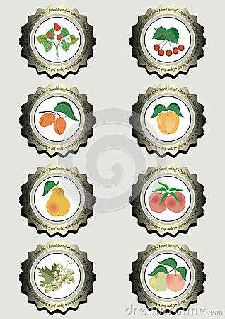 Collection of icons with fruits