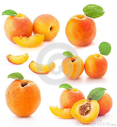 Free Collection Of Apricot Fruits Stock Images - 25376644