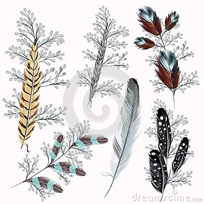 Free Collection Of Boho Feathers Stock Photos - 113404113