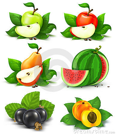 Free Collection Of Fruits And Berries With Green Leaves Stock Photos - 5520683
