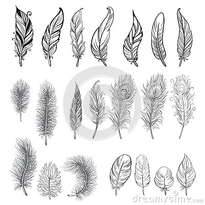 Free Collection Of Hand Drawn Feather. Royalty Free Stock Photos - 91015448