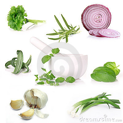 Free Collection Of Herbs Stock Photos - 23136883