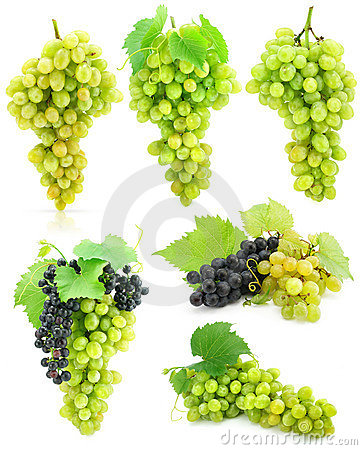 Free Collection Of Isolated Grape Clusters Stock Photo - 6669140