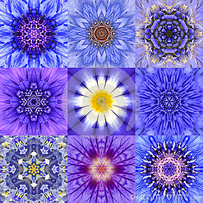 Free Collection Of Nine Blue Concentric Flower Mandalas Kaleidoscope Stock Photo - 51983770