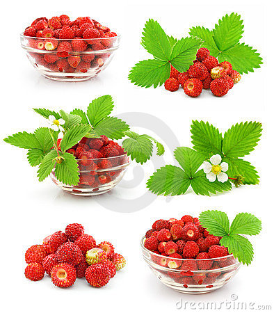 Free Collection Of Red Strawberry Fruits With Leafs Royalty Free Stock Images - 5469159