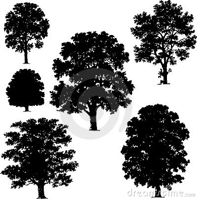 Free Collection Of Tree Vectors Stock Photography - 4857592