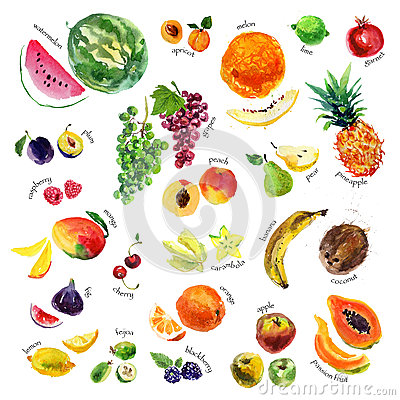 Free Collection Of Watercolor Hand Drawn Fruits And Berries On White Background. Stock Photos - 64067003
