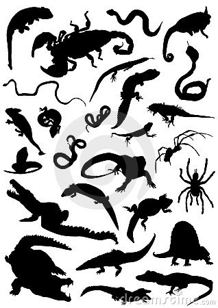 Collection of reptiles vector