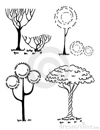 Collection of silhouettes of trees