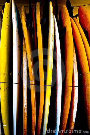 Collection of surf boards stood up together