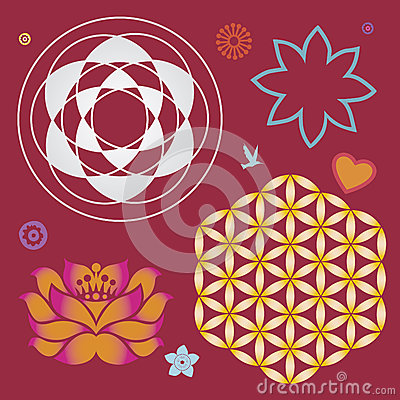 Collection of symbols of a lotus and life flower