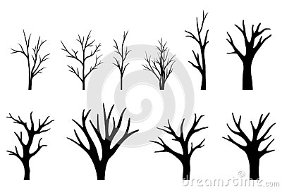 Collection of trees silhouettes on white background Vector Illustration