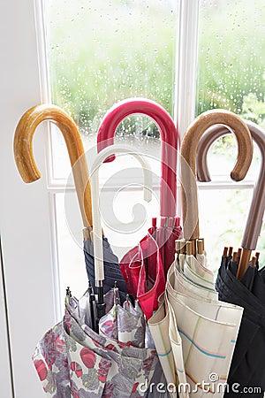 A collection of umbrellas