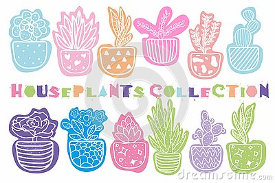 Collection of hand drawn houseplants Vector Illustration
