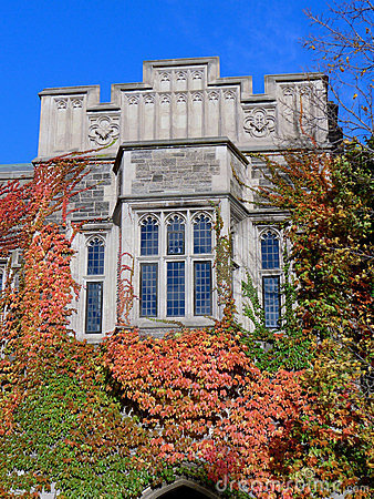 College with Fall Vines