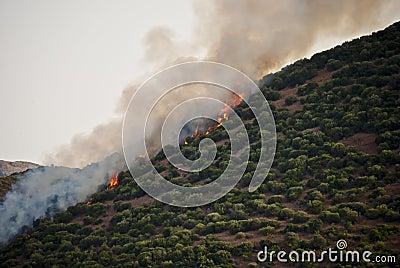 Collina su fuoco in Sardegna