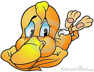 Colocación del pato