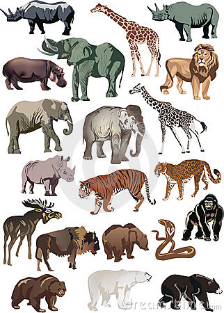 Free Color Animals Large Collection Stock Images - 19740484