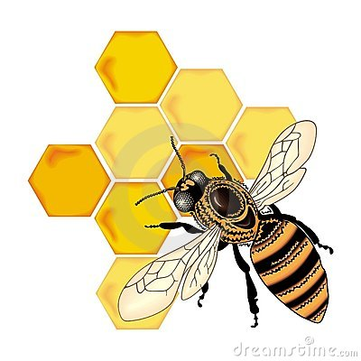 Free Color Bee Vector Royalty Free Stock Photo - 4490635