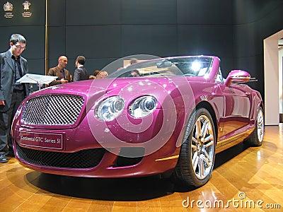 Color de rosa Foto de archivo editorial