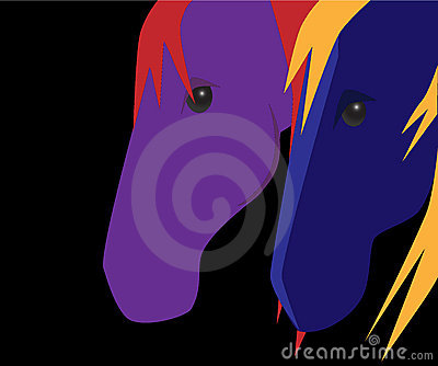 Color Horses on Black