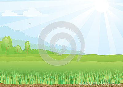 Illustration of green field with sunshine rays and