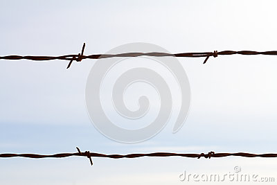Simple Barbed Wire Abstract