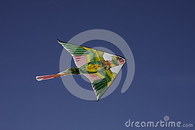 Color kite