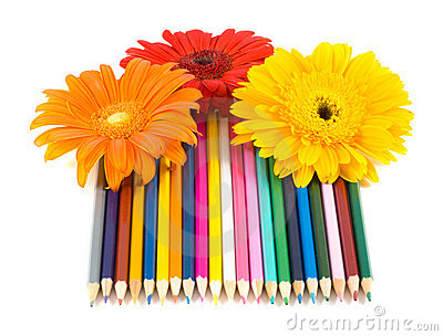 Color pencils and flower