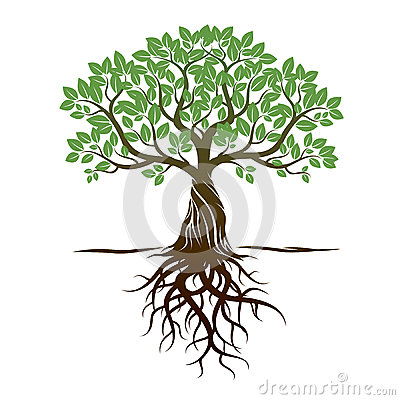 Color Tree and Roots. Vector Illustration. Stock Photo