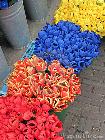 Free Color Tulip Diversity Heap On The Street Road, Stock Photo - 16539070