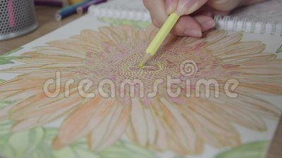 Color Video Of A Woman Hand Holding Pencil Drawing And Coloring Book Activity For Relaxing Concentrate Stock Footage