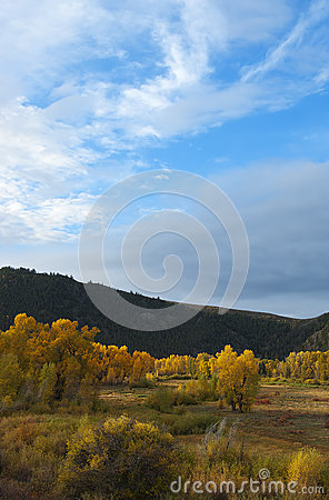 Colorado Fall-12 3357