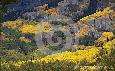 Colorado Fall-12 3751