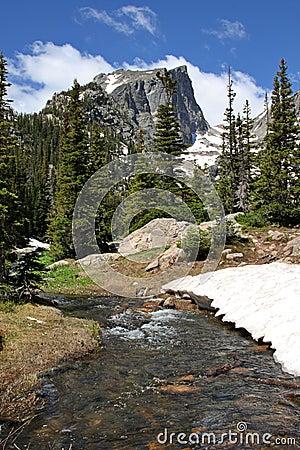 Free Colorado Mountain Stream Royalty Free Stock Photos - 9965048