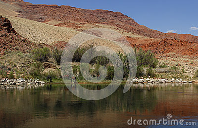 Colorado River, Arizona, USA