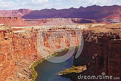 The Colorado River  into the high banks