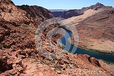 Colorado River vista