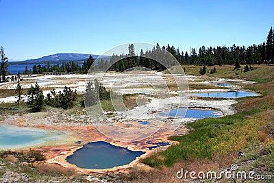 Colored Basins