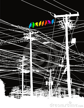 Colored birds on power lines