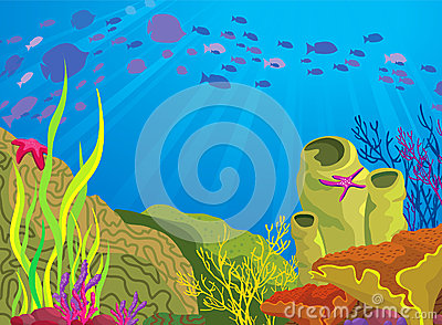 Colored coral reef and school of fish