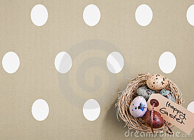 Colored Eggs In A Small Nest