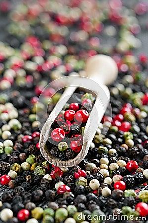 Colored pepper
